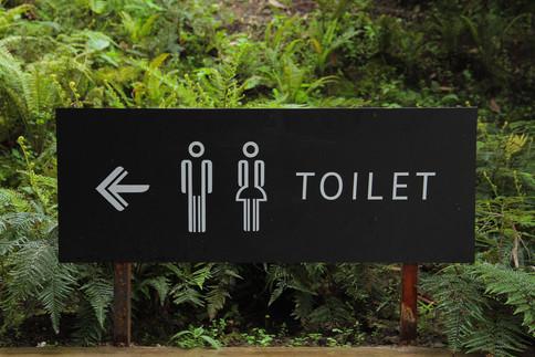 Der Weg zur Toilette bei Harnwegsinfekten