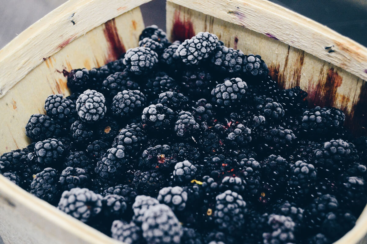 Beeren sind reich an Antioxidanzien