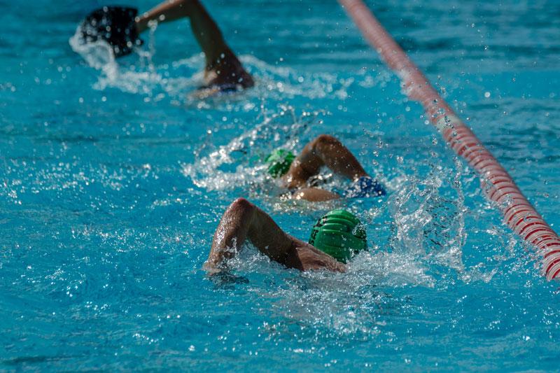 Schwimmtraining beim Pro Team Mohrenwirt.