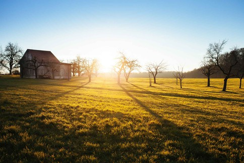 landschaft_by-philipp-reiner_wer-braucht-vitamin-b12