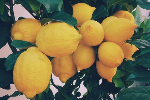Bei Stress und wenn gar nichts mehr klappt liefert der Duft der Zitrone wieder Energie.