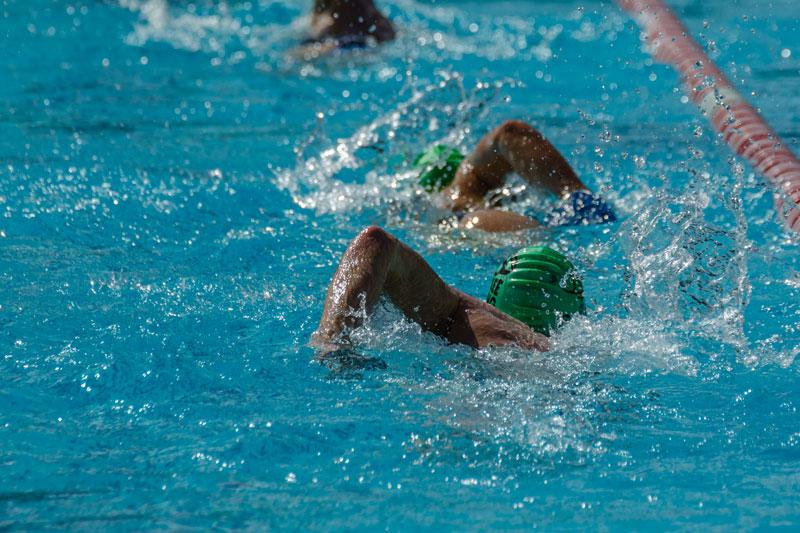 schwimmen_by-pro-team-mohrenwirt_faszination-triathlon